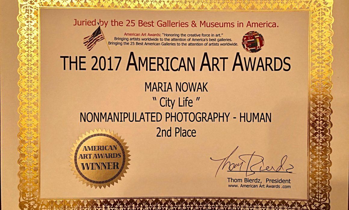 The 2017 American Art Awards - City Life