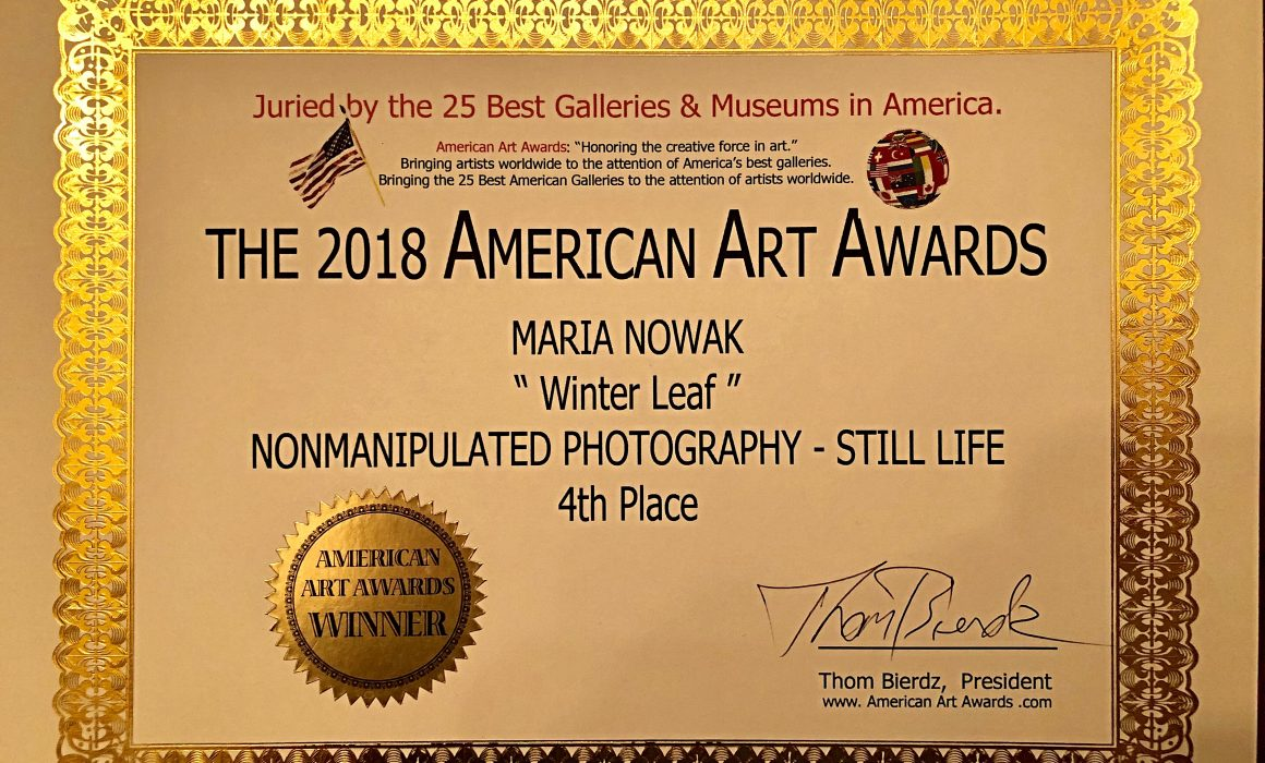 The 2018 American Art Awards - Winter Leaf